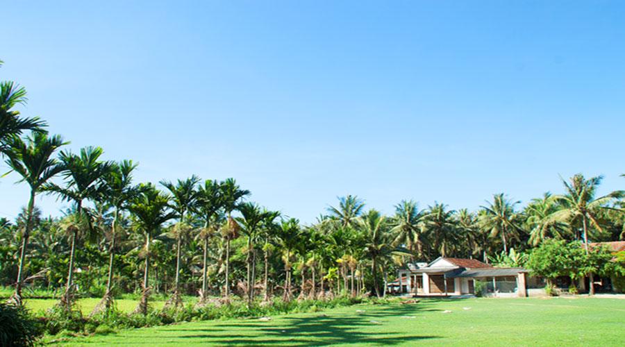 Đón gió hè mát lành ở vùng quê Bình Định