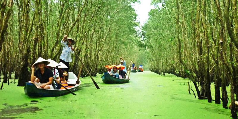 Ngắm rừng tràm Trà Sư mùa nước nổi