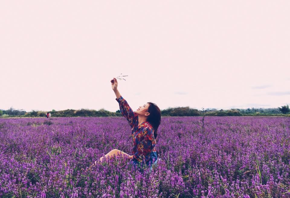 Giới trẻ đổ xô 'check-in' cánh đồng hoa tím biếc ở Đắk Lắk